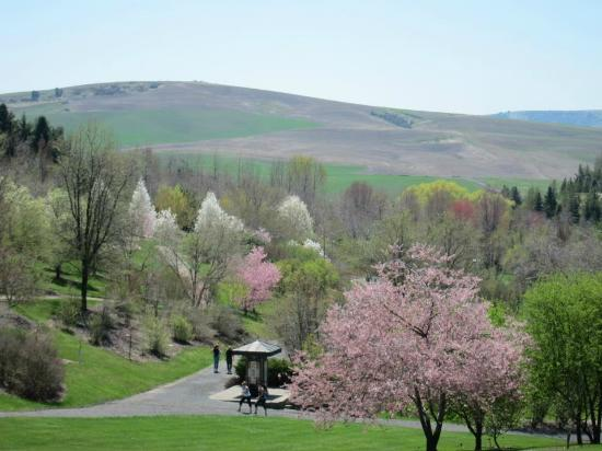 university-of-idaho-arboretum