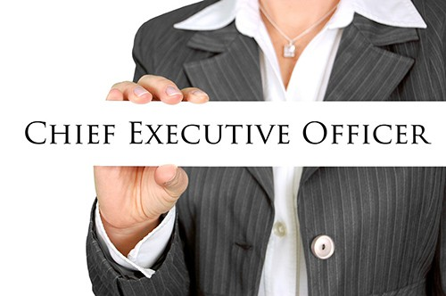 01 Chief Executive Officer